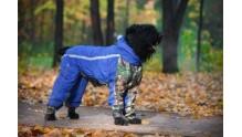 Как сделать выкройку и сшить комбинезон для собаки своими силами