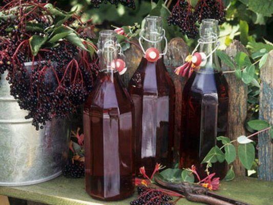 готовые бутылки вина