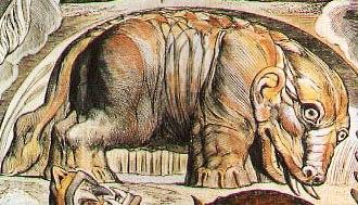 древняя картинка бегемота