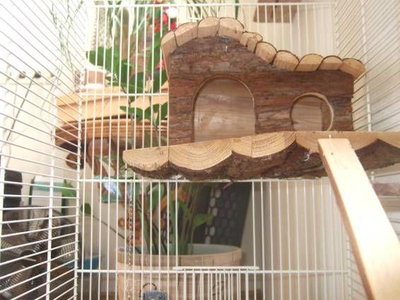 домик для жилья