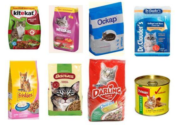 готовое питание для кошек