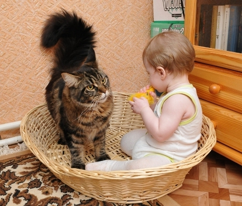 играет с малышом
