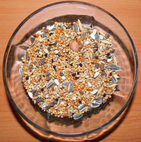 питание зернами
