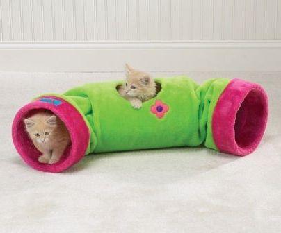 труба для игр котенка