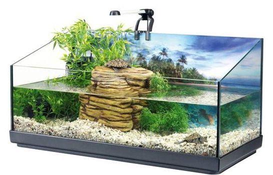 бассейн для черепахи