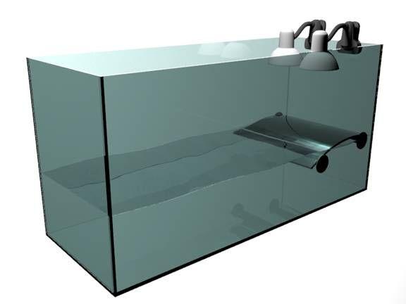 пустой аквариум