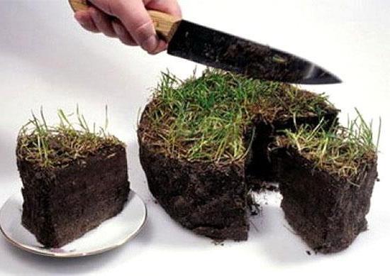 торт из земли